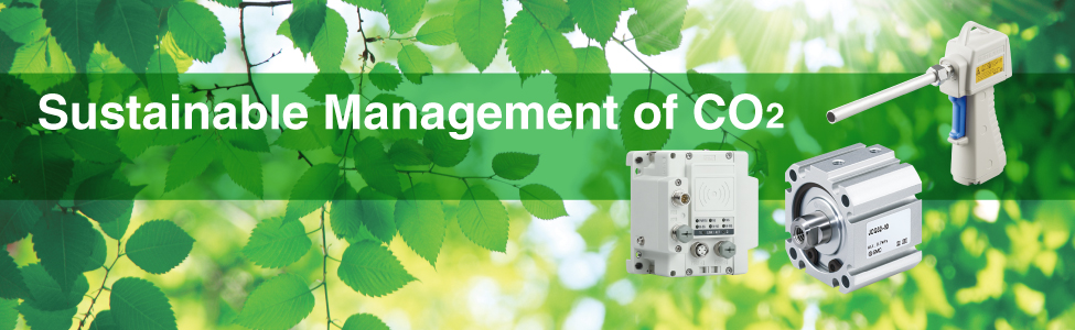 Sustainable Management of CO2