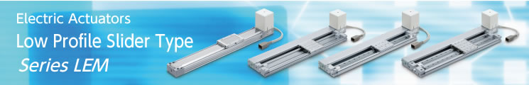 Low Profile Slider Type Series LEM