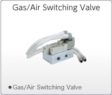 Gas/Air Switching Valve