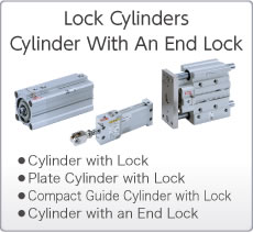 Lock Cylinders/Cylinder with An End Lock